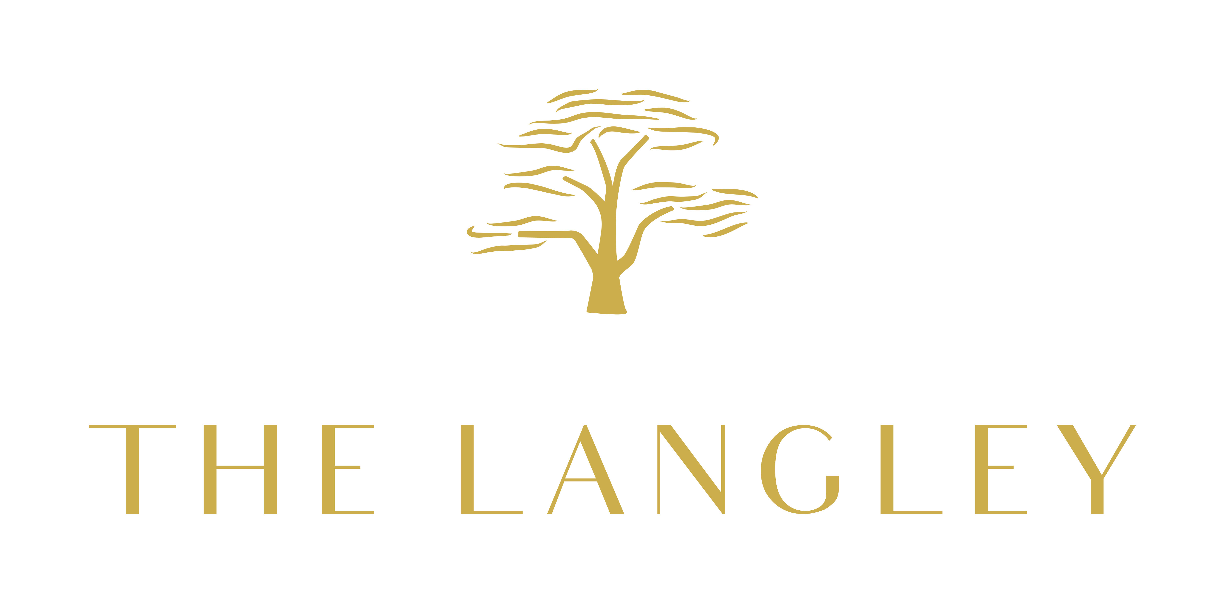 The Langley